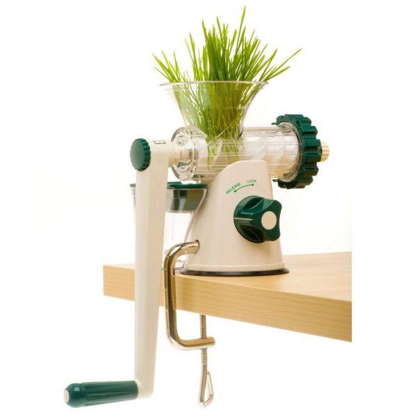 Lexen Healthy Juicer Manual GP27-W