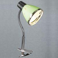 Светильник с прищепкой Sneha 1055/MT APPLE GN