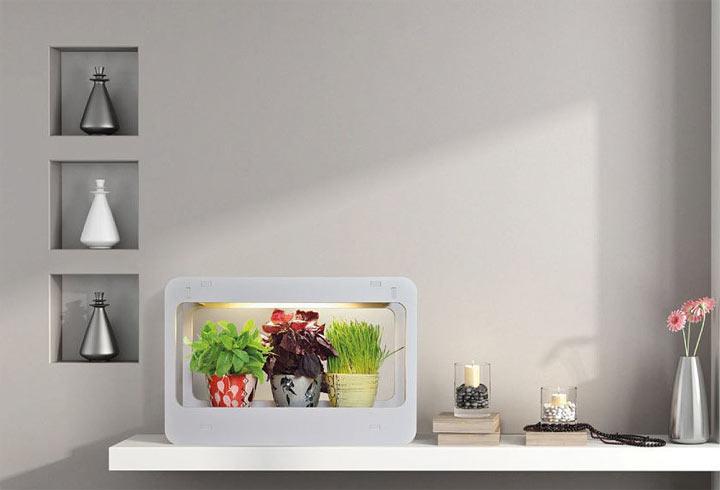 Светильник для растений в интерьере