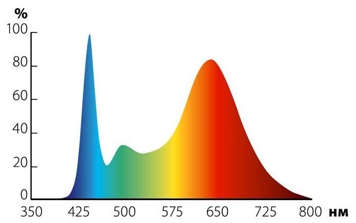 Спектр фитосветильника для рассады и цветения